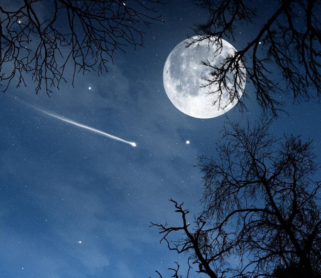luna_93377200.jpg